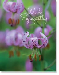 WITH SYMPATHY PETITE