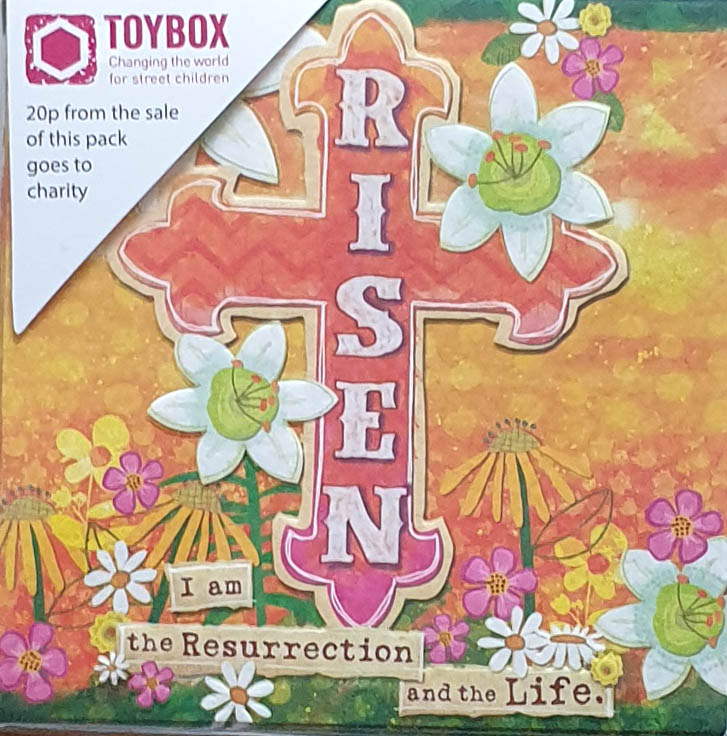TOYBOX RISEN PACK OF 8