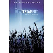 NIV OUTREACH NEW TESTAMENT LARGE PRINT