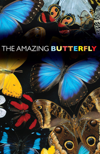 THE AMAZING BUTTERFLY TRACT PACK OF 25