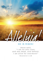 ALLELUIA EASTER CARD PACK OF 5