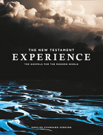 ESV NEW TESTAMENT EXPERIENCE