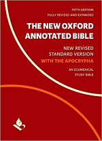 NRSV ANNOTATED STUDY BIBLE WITH APOCRYPHA