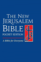 NJB POCKET EDITION BIBLE HB