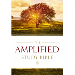 AMPLIFIED STUDY BIBLE HB