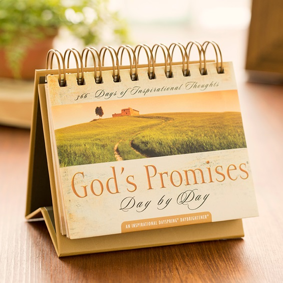 GODS PROMISES DAY BY DAY DAYBRIGHTENER