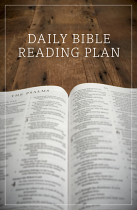 DAILY BIBLE READING PLAN PACK OF 25