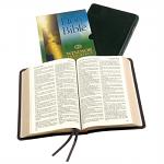 KJV WINDSOR TEXT BIBLE