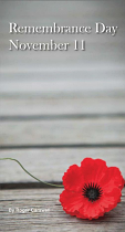 REMEMBRANCE DAY TRACT PACK OF 25