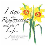 I AM THE RESURRECTION PACK OF 5