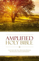 AMPLIFIED BIBLE LARGE PRINT HB